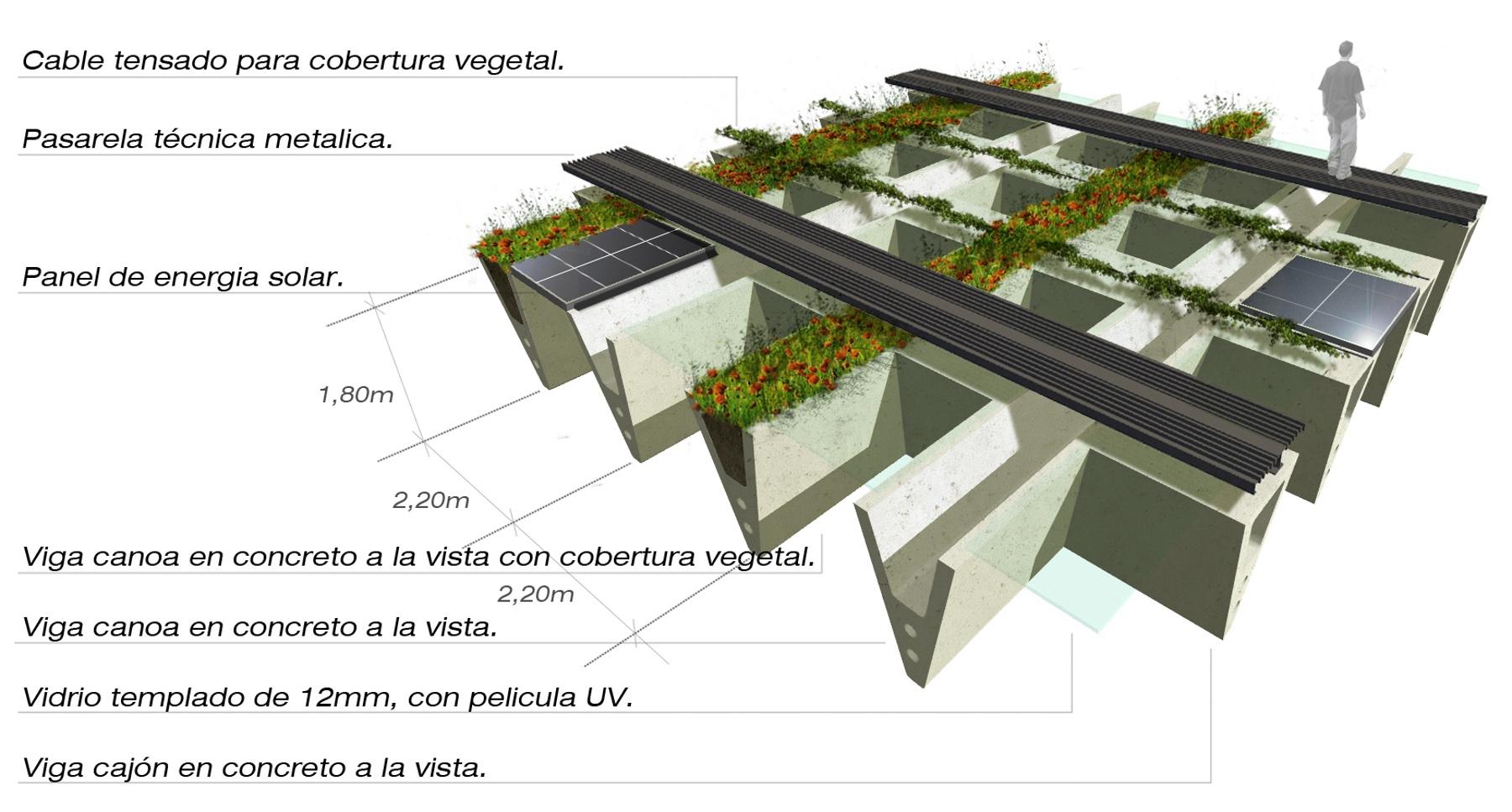 CO-Pab_verde08